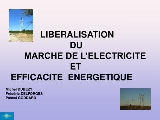 LIBERALISATION               DU  MARCHE DE L'ELECTRICITE                           ET