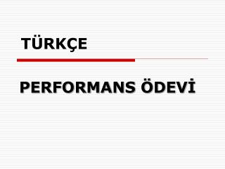 PERFORMANS  DEVI