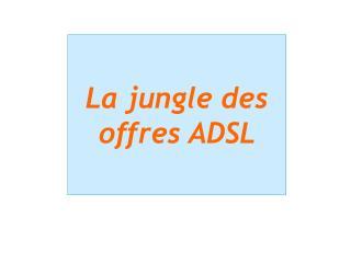 La jungle des offres ADSL