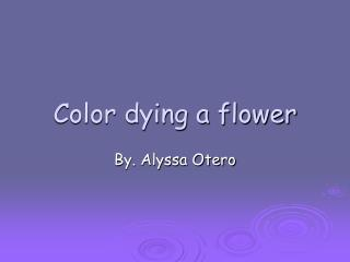 Color dying a flower