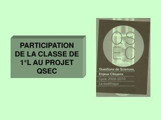 PARTICIPATION  DE LA CLASSE DE 1°L AU PROJET  QSEC