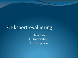 7. Ekspert-evaluering