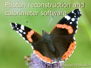 Photon reconstruction and calorimeter software