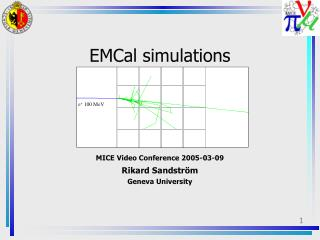 EMCal simulations