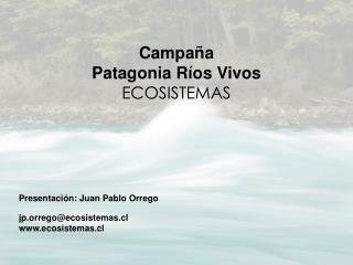 Campaña   Patagonia Ríos Vivos ECOSISTEMAS