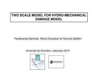 TWO SCALE MODEL FOR HYDRO-MECHANICAL DAMAGE MODEL