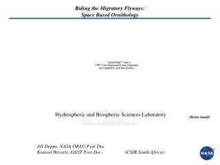 Riding the Migratory Flyways:  Space Based Ornithology