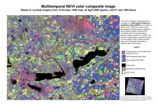 Multitemporal NDVI color composite image
