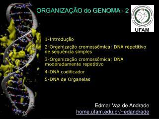 ORGANIZAÇÃO do GENOMA - 2