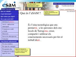 > Que ès l'eSAM ?
