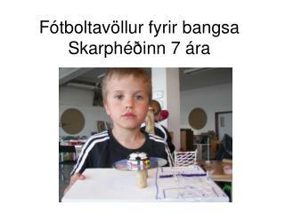 Fótboltavöllur fyrir bangsa Skarphéðinn 7 ára