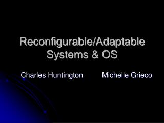 Reconfigurable/Adaptable Systems & OS