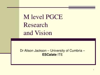 M level PGCE  Research and Vision
