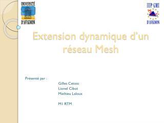 Extension dynamique d'un réseau  Mesh