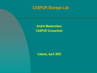 CASPUR Storage Lab