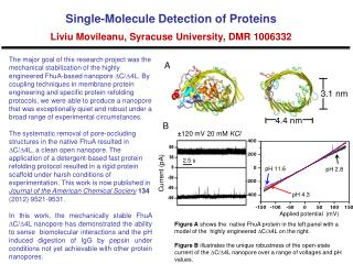 Single-Molecule Detection of Proteins Liviu Movileanu, Syracuse University ,  DMR 1006332