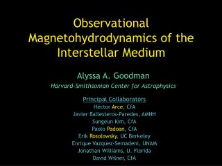 Observational Magnetohydrodynamics of the Interstellar Medium