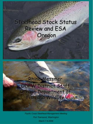 Steelhead Stock Status Review and ESA  Oregon