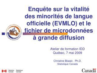 Atelier de formation IDD Québec, 7 mai 2009 Christine Blaser,  Ph.D. Statistique Canada