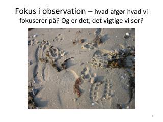 Fokus i observation �  hvad afg�r hvad vi fokuserer p�? Og er det, det vigtige vi ser?
