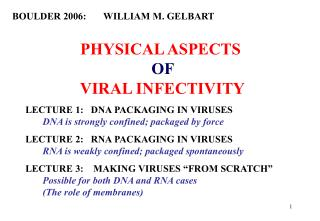 PHYSICAL ASPECTS                      OF           VIRAL INFECTIVITY