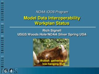 NOAA IOOS Program Model Data Interoperability  Workplan  Status