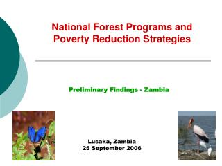National Forest Programs and 	Poverty Reduction Strategies