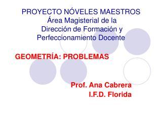 PROYECTO N VELES MAESTROS   rea Magisterial de la   Direcci n de Formaci n y Perfeccionamiento Docente