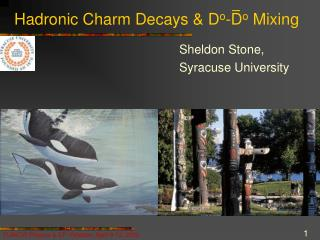 Hadronic Charm Decays & D o -D o  Mixing