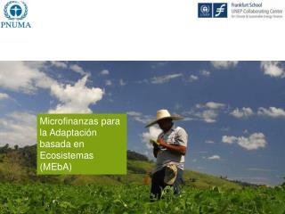 Microfinanzas para la Adaptación basada en Ecosistemas (MEbA)