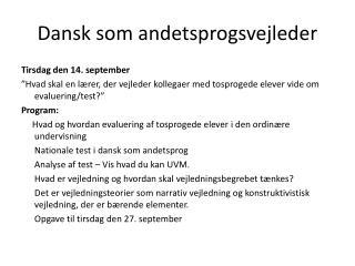 Dansk som andetsprogsvejleder