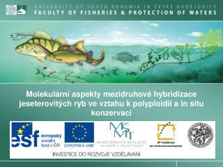 Molekulární aspekty hybridizace jeseterovitých ryb