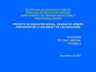 SECRETAR A DE EDUCACI N P BLICA DIRECCI N DE EDUCACI N ESPECIAL DEPARTAMENTO DE CARRERA MAGISTERIAL Y PROFESIONALIZACI N