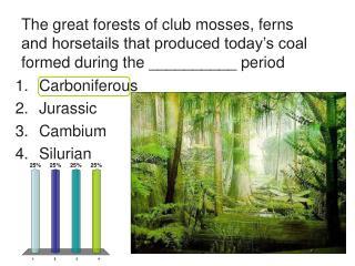 Carboniferous  Jurassic Cambium Silurian