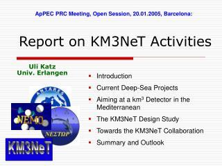 Report on KM3NeT Activities