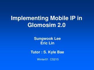 Implementing Mobile IP in Glomosim 2.0