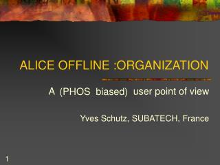 ALICE OFFLINE :ORGANIZATION