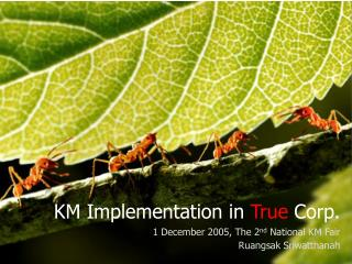 KM Implementation in  True  Corp. 1 December 2005, The 2 nd  National KM Fair