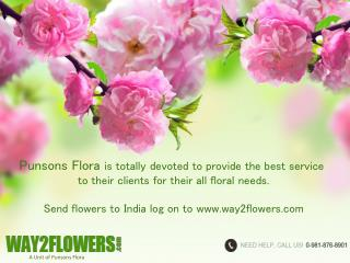 Send Online Flowers Delivery to Chandigarh