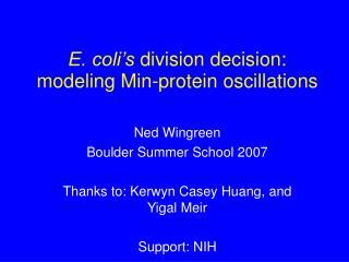 E. coli's  division decision: modeling Min-protein oscillations