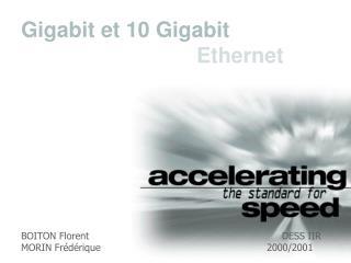 BOITON Florent     DESS IIR MORIN Frédérique2000/2001