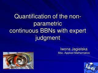 Quantification of the non- parametric continuous BBNs with expert judgment