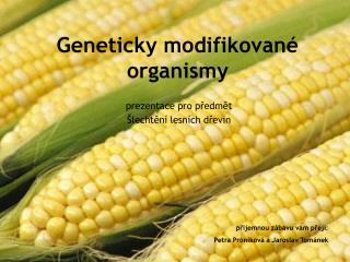 Geneticky modifikované organismy