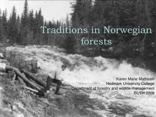 Traditions in Norwegian forests