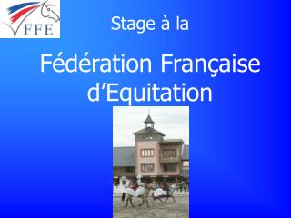 Stage � la  F�d�ration Fran�aise d�Equitation