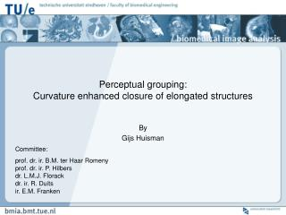 Perceptual grouping:  Curvature enhanced closure of elongated structures