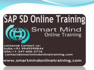 SAP SD online training | Online SAP SD Training in usa, uk,
