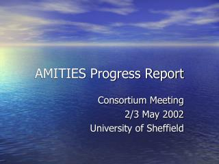 AMITIES Progress Report