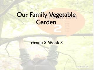 Our Family Vegetable Garden