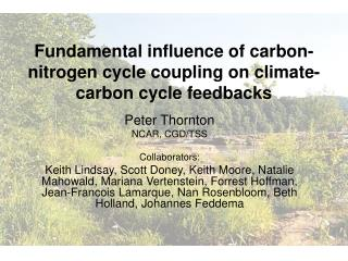 Fundamental influence of carbon-nitrogen cycle coupling on climate-carbon cycle feedbacks
